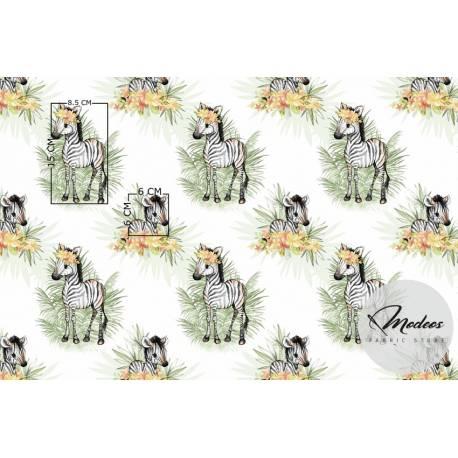 Tkanina zebry na białym tle - materiał bawełna