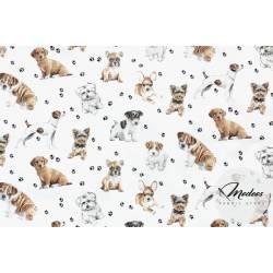 Tkanina psy pieski na białym tle - materiał bawełna