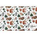 Materiał leśne zwierzęta misie wiewiórki - tkanina bawełna