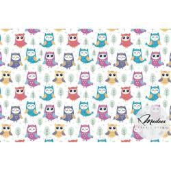 Tkanina kolorowe sowy na białym tle - materiał bawełna