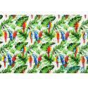 Papugi i zielone liście palmy monstera - tkanina bawełniana