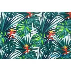 Niebieskie i zielone liście palmy monstera - tkanina bawełniana