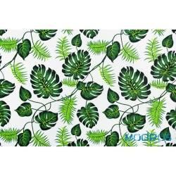Zielone liście palmy monstera na białym - tkanina bawełniana